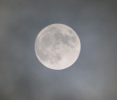 Jan - Wolf Moon