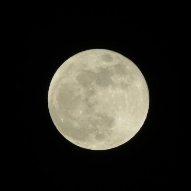 Swan Moon - 31/01/18